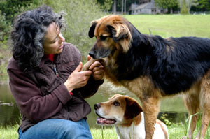 Kathy Sdao with dogs