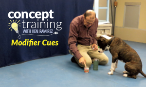 Concept Training Modifier Cues